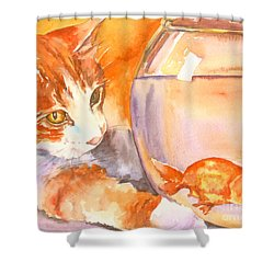Orange Tabby With Goldfish Shower Curtain