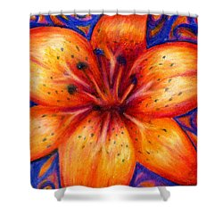 Orange Tiger Lily Drawing Shower Curtain