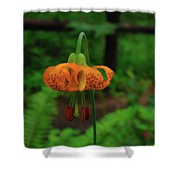 Shower Curtain featuring the photograph Orange Tiger Lily by Tikvah's Hope
