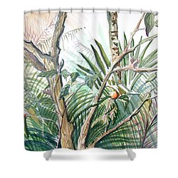 Orange Tree Shower Curtain by Mindy Newman