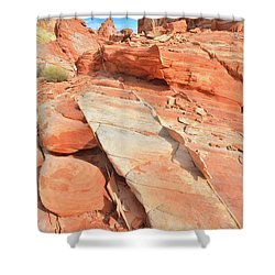 Orange Valley In Valley Of Fire Shower Curtain by Ray Mathis