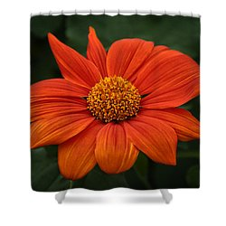 Orange You Pretty Shower Curtain