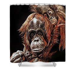 Orangutans Two Shower Curtain