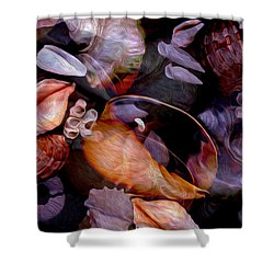 Orbiting Seashells Shower Curtain
