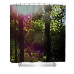 Orbs In The Forest Shower Curtain