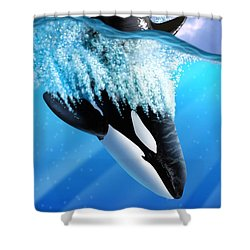 Orca 2 Shower Curtain by Jerry LoFaro