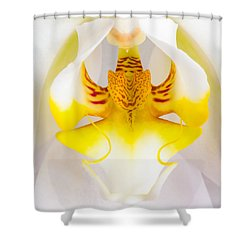Orchid 1 Shower Curtain