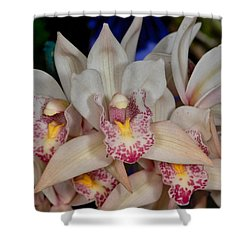 Orchid 348 Shower Curtain