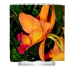 Orchid 355 Shower Curtain