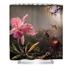 Orchid And Three Brazilian Hummingbirds Shower Curtain by Pg Reproductions