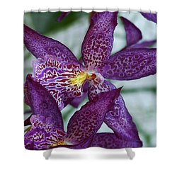 Orchid Awakening Shower Curtain