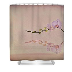 Orchid Blooms And Buds Shower Curtain by Tom Mc Nemar