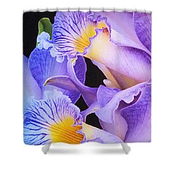 Orchid Bouquet Shower Curtain