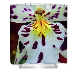 Orchid Cross Shower Curtain