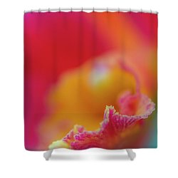 Orchid Detail Shower Curtain
