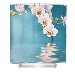 Orchid Dreams Shower Curtain