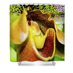 Orchid Faces Shower Curtain