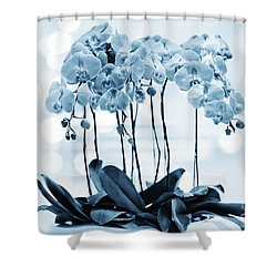 Orchid Flowers Blue Tone Shower Curtain