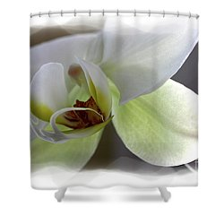 Orchid For Valentines Day Shower Curtain