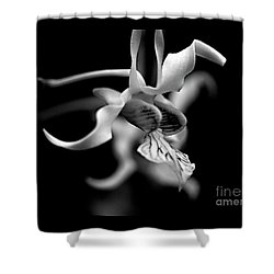 Orchid In Black And White Shower Curtain