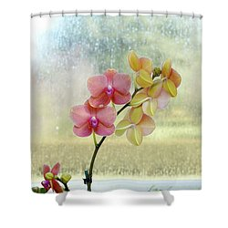 Orchid In Portrait Shower Curtain