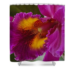 Shower Curtain featuring the photograph Orchid In The Wild by Debbie Karnes