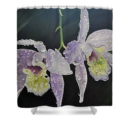 Orchid Jewels Shower Curtain by AnnaJo Vahle