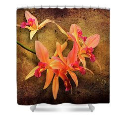 Shower Curtain featuring the photograph Orchid - Laelia - It's Showtime by Mike Savad