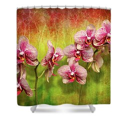 Shower Curtain featuring the photograph Orchid - Phalaenopsis - Simply A Delight by Mike Savad