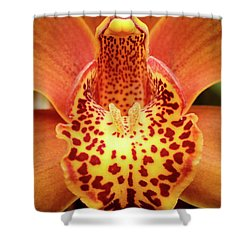 Orchid Splendor Shower Curtain