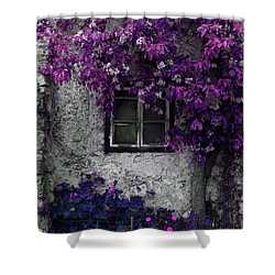 Orchid Vines Window And Gray Stone Shower Curtain by Brooke T Ryan