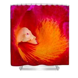 Orchid Vortex 458 Shower Curtain