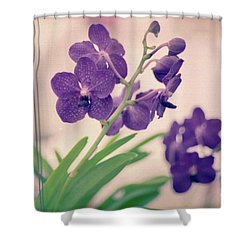 Shower Curtain featuring the photograph Orchids In Purple  by Ana V Ramirez