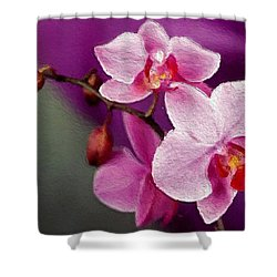 Orchids In Violets Shower Curtain by Anthony Fishburne