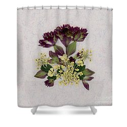 Oregano Florets And Leaves Pressed Flower Design Shower Curtain
