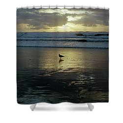 Oregon Coast 3 Shower Curtain