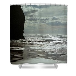 Oregon Coast 5 Shower Curtain