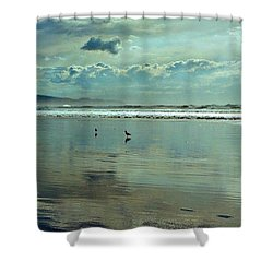 Oregon Coast 6 Shower Curtain