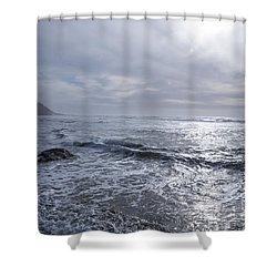 Oregon Coast Shower Curtain by Billie-Jo Miller