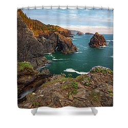 Shower Curtain featuring the photograph Oregon Coastal Scenic by Leland D Howard