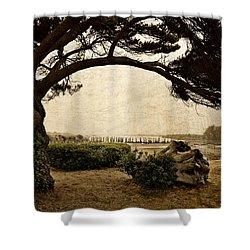 Oregon Coastline With Tree Shower Curtain