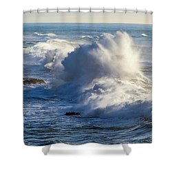 Oregon Surf Shower Curtain by Dennis Bucklin