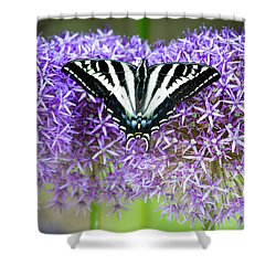 Shower Curtain featuring the photograph Oregon Swallowtail by Bonnie Bruno