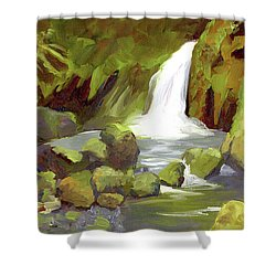 Oregon Waterfall Shower Curtain by Alice Leggett