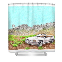 Shower Curtain featuring the painting Organ Mountain Mustang by Jack Pumphrey