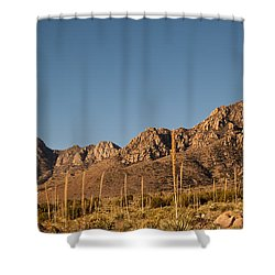 Organ Mountans At Sunrise-3 Shower Curtain