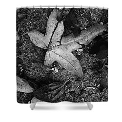 Organicly Speaking  Shower Curtain by Laura Ragland