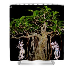 Oriental Bonsai Gods Shower Curtain by Gary Crockett
