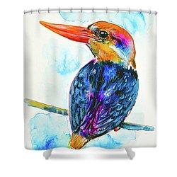 Oriental Dwarf Kingfisher Shower Curtain by Zaira Dzhaubaeva