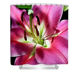 Oriental Trumpet Lily Shower Curtain